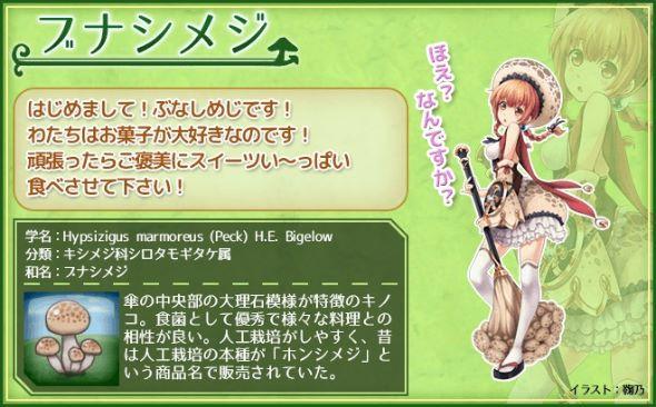 miyako_141215kinoko02