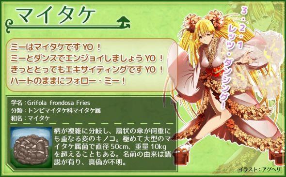 miyako_141215kinoko07