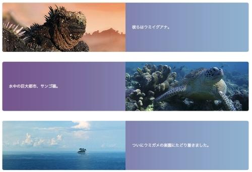 海がめロキシーの冒険___シアター23_4___Orbi_Yokohama_(オービィ横浜) 2