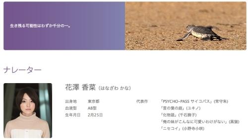 海がめロキシーの冒険___シアター23_4___Orbi_Yokohama_(オービィ横浜) 3