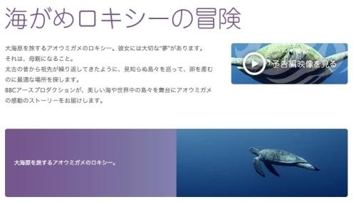 海がめロキシーの冒険___シアター23_4___Orbi_Yokohama_(オービィ横浜)