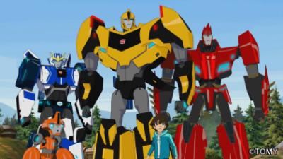transformers-adv_img_04
